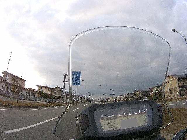 15110164.jpg